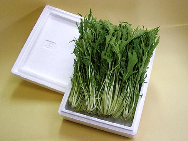 野菜用容器